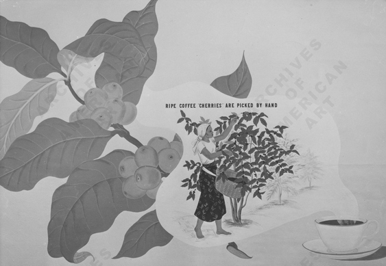 Ripe coffee cherries are picked by hand. Manning's Coffee Murals by Dorr Bothwell (1940). Archives of American Art.