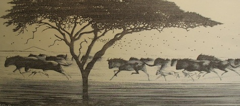 One Day in East Africa 03 (1991). Toshi Yoshida. Woodblock print, handcut by the artist, with zinc effect (10.5 x 23.6). Monochrome artist's print. SKU: TY03M