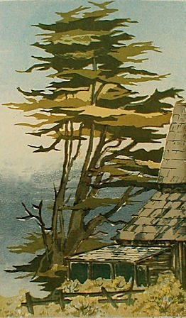 Zenith Hill, Mendocino (1968). Watercolor by Bill Zacha. WZ196802
