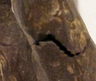 The small opening below the left knee occurred during the casting process and does not compromise structural integrity of Bill Zacha's Priam II (detail).