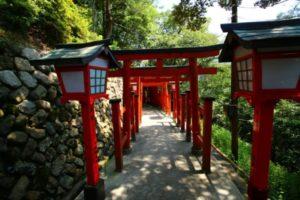 Torii at the Taikodani Inari Shrine